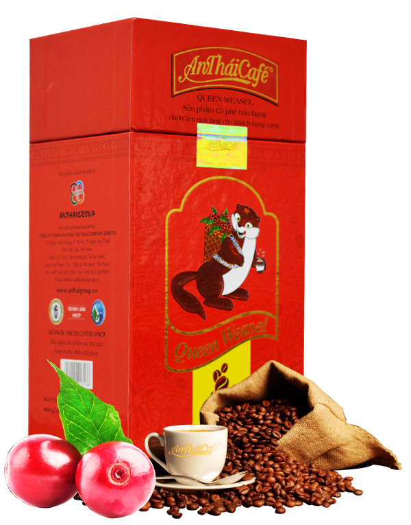 Cà phê bột Queen Weasel - AnTháiCafé