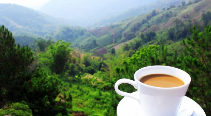 Tận hưởng cuốc sống như tách cà phê 3in1